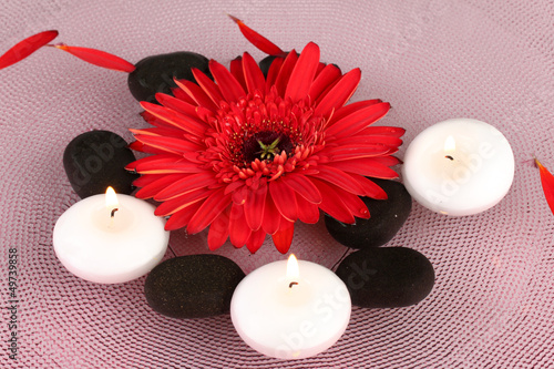 Akustikstoff - spa stones with flower and candles in water on plate