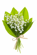 Lily-of-the-valley Flowers On ...