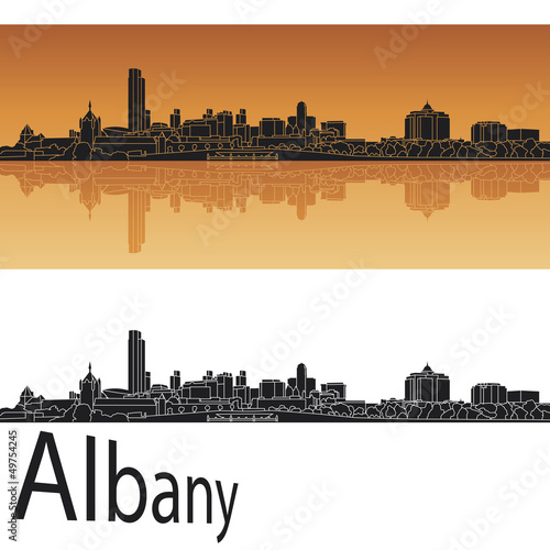 Fotografie, Obraz  Albany skyline