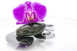 Orchid flower and black stones in water