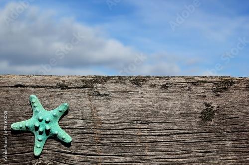 Fotografie, Obraz  Starfish on barnwood with sky at the beach