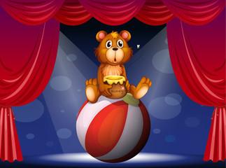 Cirkuska predstava s medvjedom