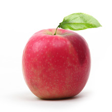 Pomme Pink