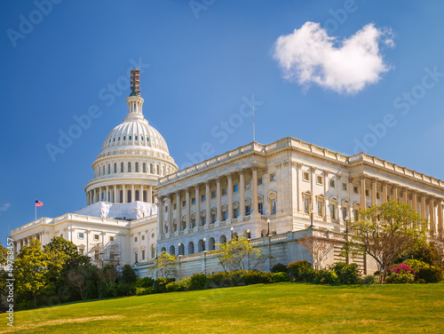 Fototapeta US Capitol at sunny day obraz