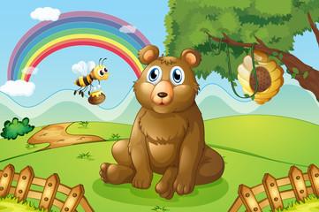 Medvjed i pčela u blizini košnice