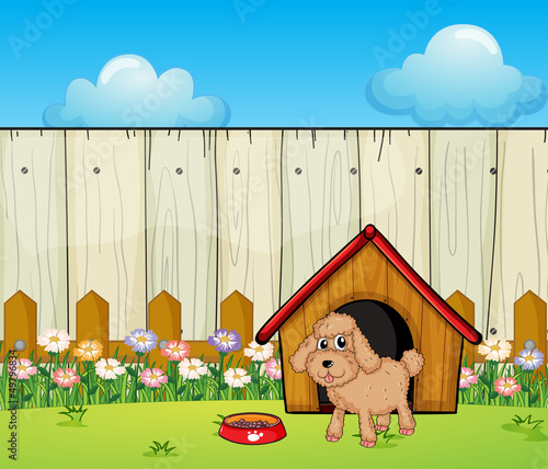 Foto op Canvas Honden A dog with a dog house inside the fence