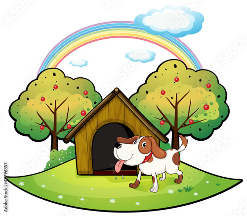 Foto op Canvas Pistache A dog with a dog house near an apple tree