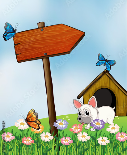 Tuinposter Vlinders A bulldog with a wooden arrow signboard