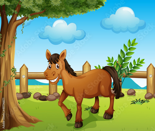 Poster de jardin Ferme A horse under the tree