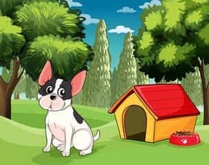 Pas u blizini pseće kućice s psećom hranom