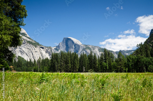 Yosemite National Park - Half Dome Canvas Print