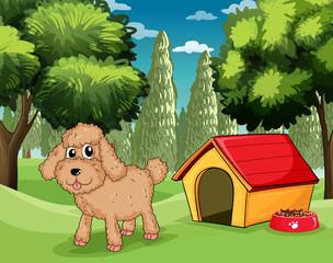 Pas koji stoji ispred svoje pseće kućice