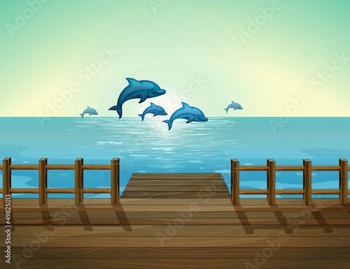 Staande foto Dolfijnen Six dolphins diving