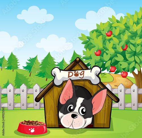 Poster Dogs A dog inside a dog house at a backyard with an apple tree