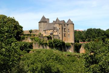 Fototapeta na wymiar Château de Salignac-Eyvigues. (Dordogne)