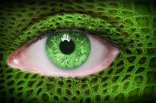Green Eye With Lizard Pattern