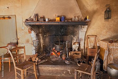 Fotografia a dog gets hot inside the fireplace