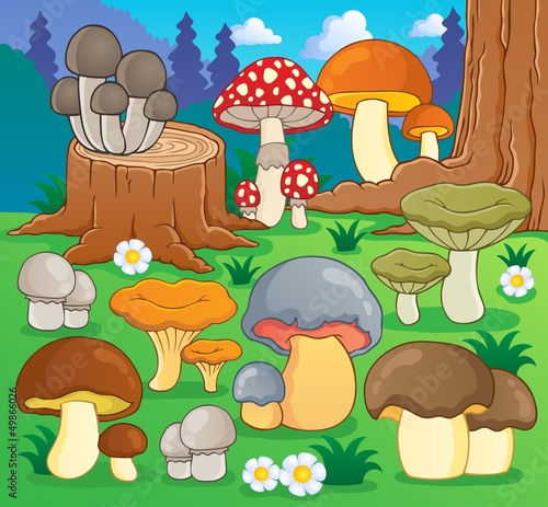 Printed kitchen splashbacks Magic world Mushroom theme image 4