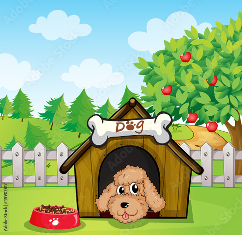 Tuinposter Honden A puppy and his dog food