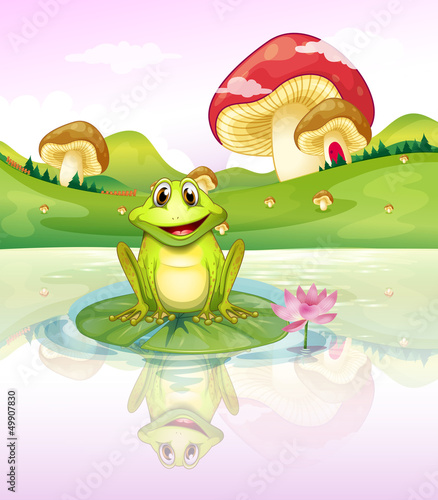 Poster Magische wereld A frog watching his reflection from the water