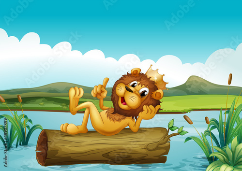 Canvas Prints River, lake A trunk with a king lion