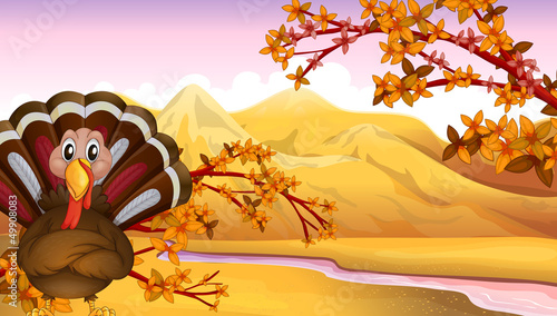Poster Oiseaux, Abeilles An autumn view with a turkey