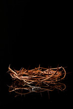 Crown Of Thorns & Nails