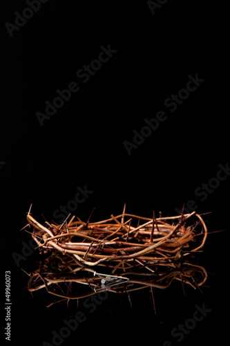 Fotografering Crown of Thorns & Nails