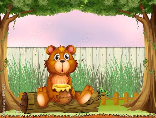 Wall Murals Bears A bear above a trunk holding a honey