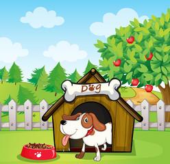 Pas unutar kućice za pse s psećom hranom