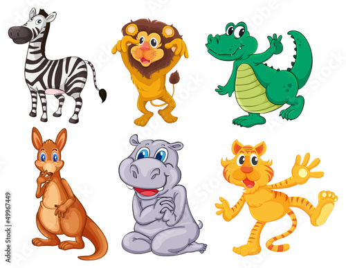 Wild and scary animals Poster