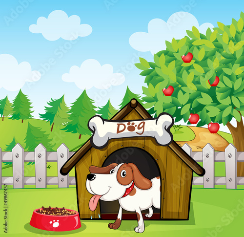 Tuinposter Honden A dog inside a doghouse with a dogfood