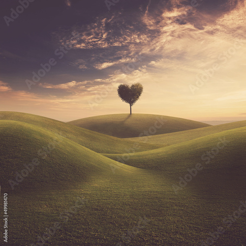 Fotografie, Tablou  Landscape with tree heart