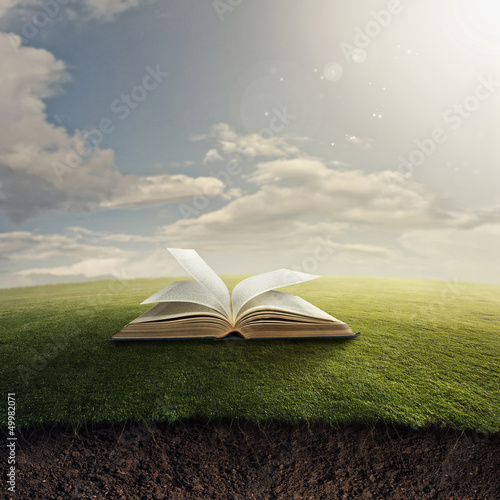 Fotografie, Obraz  Bible on grass.