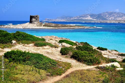 Photo  View of La Pelosa beach, Stintino, Sardinia, Italy