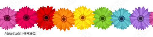 Fotografie, Obraz Horizontal seamless background with colored gerbera. Vector.