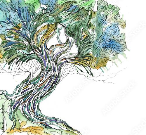 drzewo-malowane-akwarela-na-bialym-tle