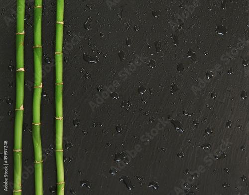 bambous sur ardoise et gouttes d'eau