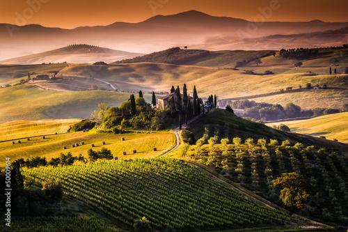 obraz dibond Paesaggio, Toscana - Italia