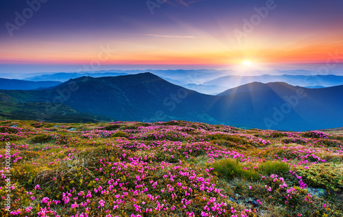 Spoed Foto op Canvas Nachtblauw mountains landscape