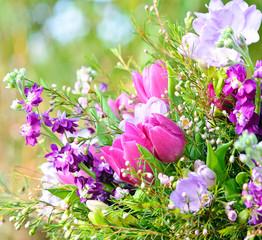 FototapetaFrühlingserwachen: Blütentraum in blau, lila und pink