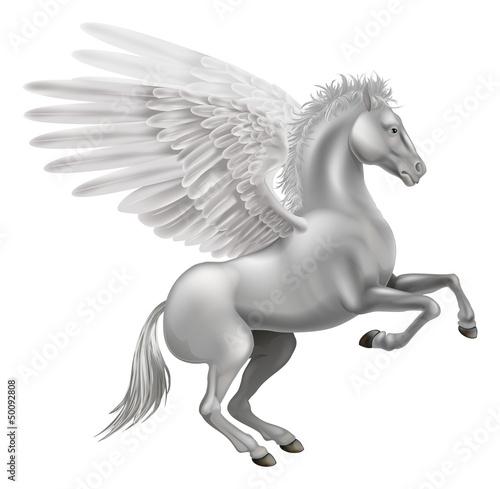 Fotografie, Obraz Pegasus horse