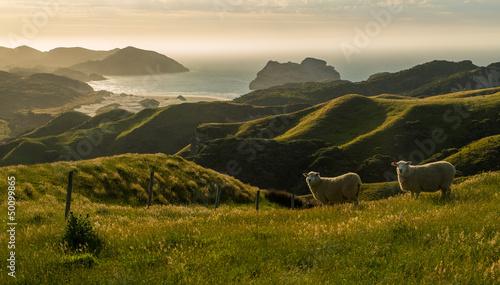 Plissee mit Motiv - West coast hills (von Martin Lehotkay)