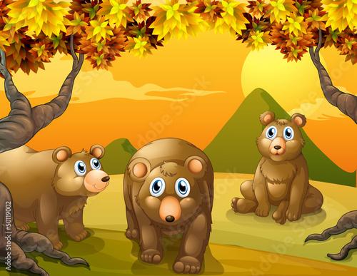 Canvas Prints Bears Three brown bears