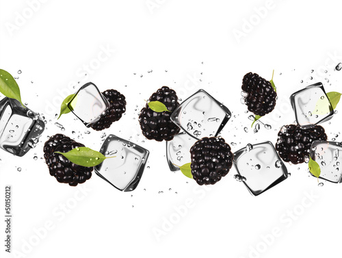 Foto auf Leinwand In dem Eis Blackberries with ice cubes, isolated on white background