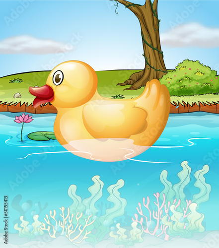 Printed kitchen splashbacks River, lake The yellow toy duck in the pond