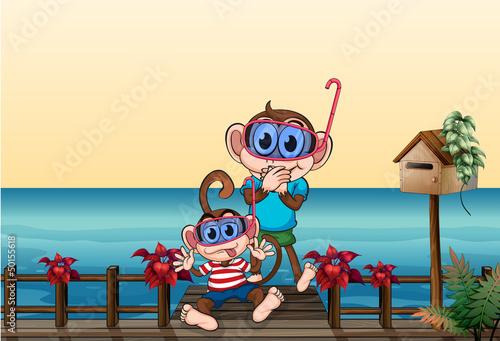 Fotobehang Beren The small and big monkey at the bridge