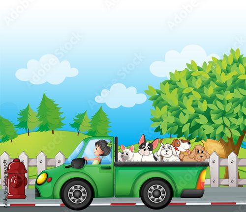 Keuken foto achterwand Cars A green car along the street with dogs at the back