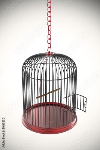 Fotografie, Obraz  Open bird cage