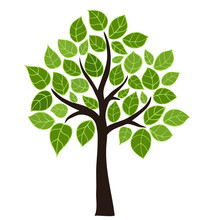 Stylized Vector Tree With Green Leafs. Element Design